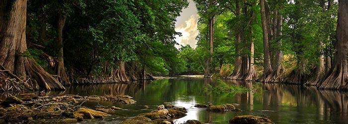 Conexão Semanal – Fluir como um rio